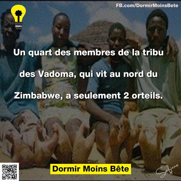 Un quart des membres de la tribu des Vadoma, qui vit au nord du Zimbabwe, a seulement deux orteils.