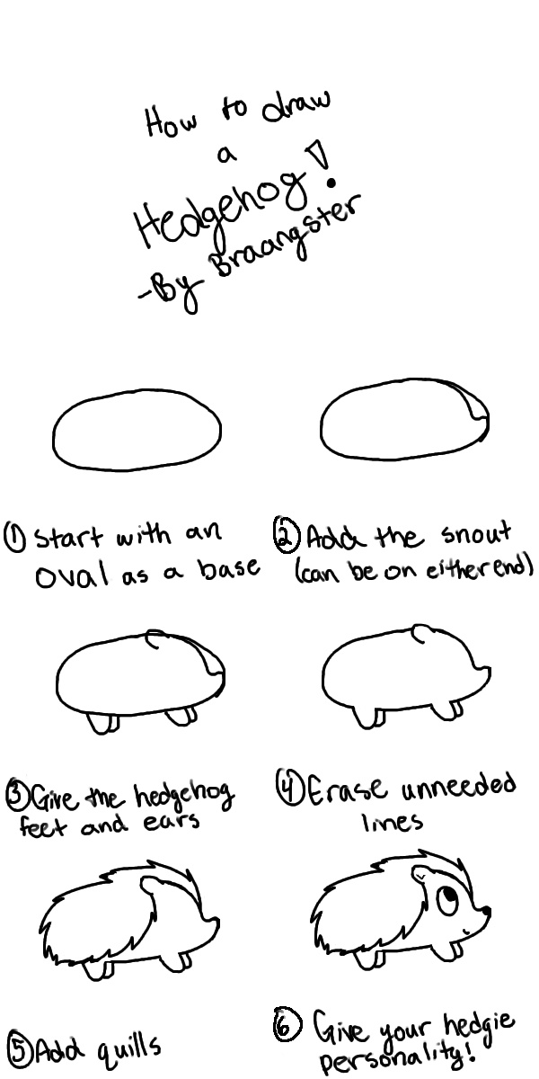 How to draw a simple hedgehog in 6 easy steps