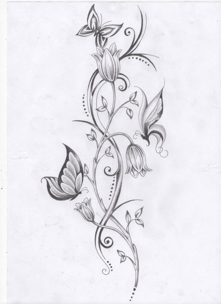 flower vine and butterflies by ashtonbkeje on deviantart tats pinterest vine tattoos. Black Bedroom Furniture Sets. Home Design Ideas