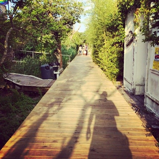 Fire Island Ny: 1000+ Images About Fire Island On Pinterest
