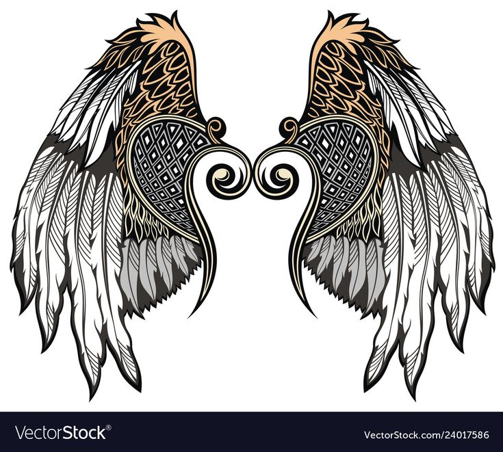 Angel wings Royalty Free Vector Image VectorStock