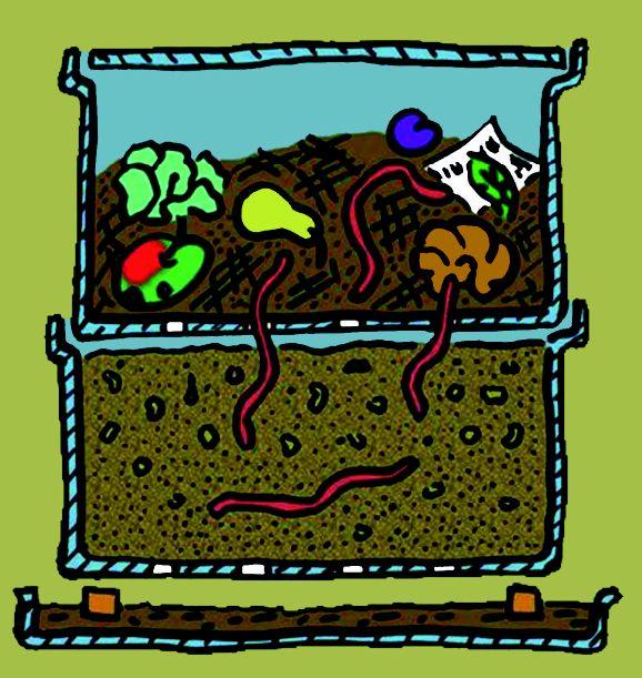 Spectacular In der Wurmfarm werden organische K chenabf lle von W rmern zu hochwertigem Humus umgesetzt So werden auf kleinem Raum N hrstoffe im System