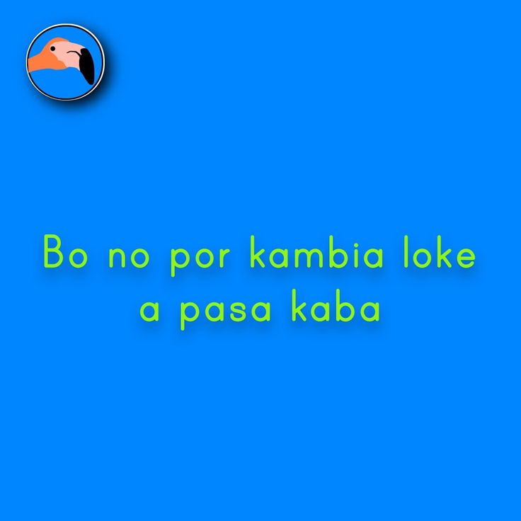 You cannot change what has already happened | Bo no por kambia loke a pasa kaba! For translation services contact us at info@henkyspapiamento.com  #papiamentu #papiaments #papiamento #creole #language #curacao #bonaire #aruba #caribbean #change #veranderen #cambiar #mudar #happen #gebeuren #pasar #acontecer More learning materials available at henkyspapiamento.com
