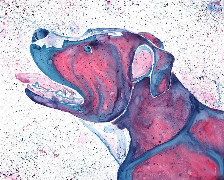 Colors Staffordshire Terrier Pit Bull Dog Original Watercolor Art Painting Dalke #Abstract