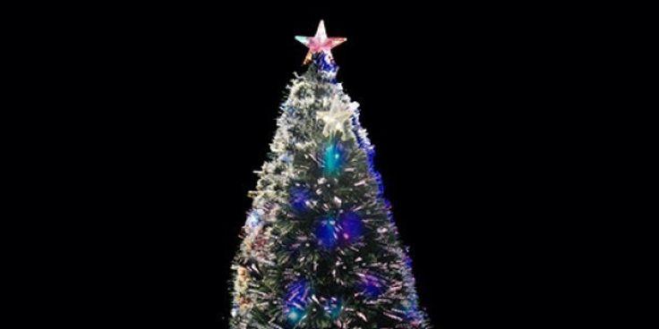 Αν ψάχνετε ακόμα τι δέντρο θα στολίσετε στις γιορτές ιδού οκτώ διαφορετικές επιλογές για να διαλέξετε.