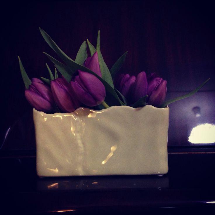 Purlpe Tulips