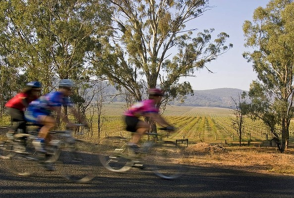 VICTORIA. Go for: Cycling between craft breweries. Stay for: The High Country Harvest in May. Pictured above: Bike riders have a new craft brewery guide to pit stops.