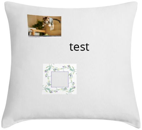 I designed this pillow at Lamps Plus! You can too! Visit http://www.lampsplus.com/customphoto/editor#load/afdf022aaf2e369b