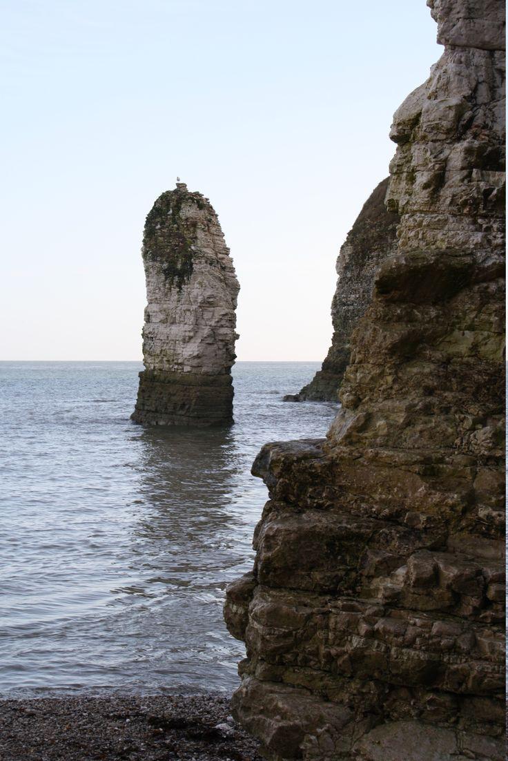 The Jurassic coast near Flamborough Head, Yorkshire, Gods Own County