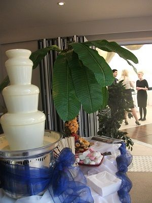 Maggies Chocolate Fountains. Sephra Chocolate Fountains, Chocolate fountain Hire, Worcester,Hereford, Gloucester and West Midlands.