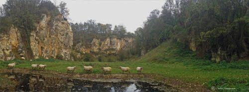 Remains of a limestone quarry.
