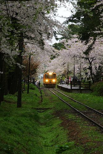 Ashinokoen-eki ... Aomori ... Though a huge departure from the shinkensen, there is something so relaxing about traveling on the rail through small villages. One of the best purchases one can make when touring Japan ... you will experience the 'life' of the countryside, rather than riding with your head in the clouds! It's not IF you have the time ... make the time - you will not be disappointed! Avg commute time btw Tokyo and Sapporo is 12 hours of pure Heaven!