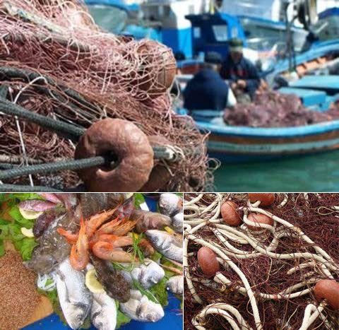 Il pescaturismo: un nuovo modo di fare vacanza.    Eco un'ottima alternativa alla classica giornata in spiaggia, un modo originale di vivere la vostra vacanza in Sardegna! Si tratta di seguire un'autentica battuta di pesca insieme ai pescatori locali, a bordo di un tipico peschereccio che si conclude con una cena (o pranzo) a base del pescato di giornata.