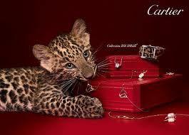 cartier jaguar