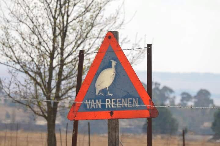 Van Reenen