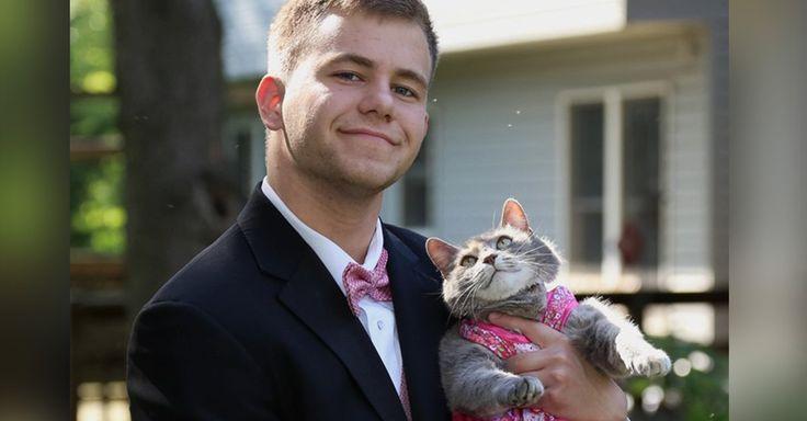 Sam Steingard es un chico que debido a que no tenia pareja para su baile de graduación, tuvo una idea muy loca, ¡decidió llevar a su gato llamado Ruby!