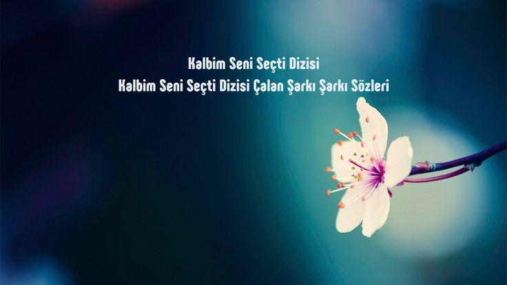 Kalbim Seni Seçti Dizisi Çalan Şarkı sözleri http://sarki-sozleri.web.tr/kalbim-seni-secti-dizisi-calan-sarki-sozleri/