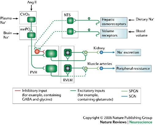 the control of nature mcphee pdf