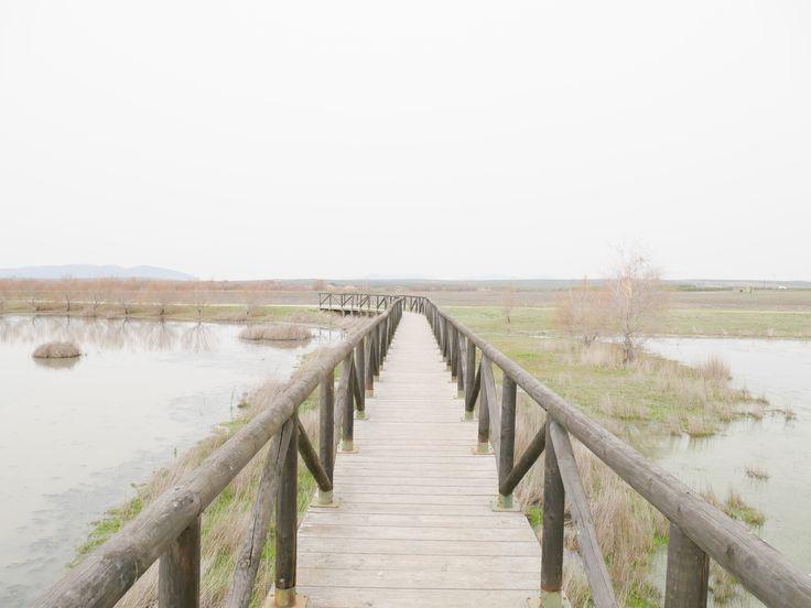 Wandern an der Lagune Fuente de Piedra in Andalusien. Entdecke dabei sogar Flamingos!