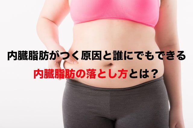 方 落とし 内臓 脂肪
