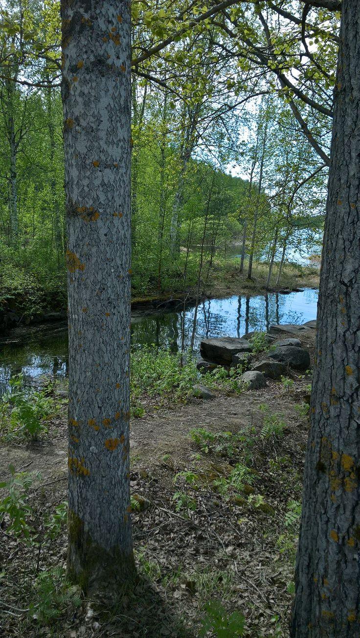 Utran saaret, islands in a river. Geocaching in Joensuu, Finland