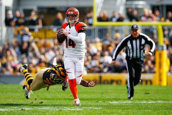 Steelers at Bengals, NFL Wild Card Round, Football Betting Odds, Free Picks and Predictions, January 9th 2016