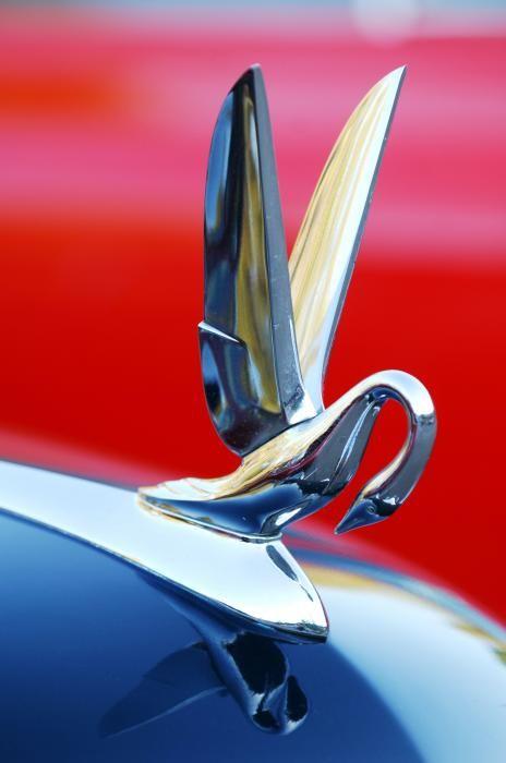 1940's Packard Cormorant Hood Ornament | Beautiful, Wings ...