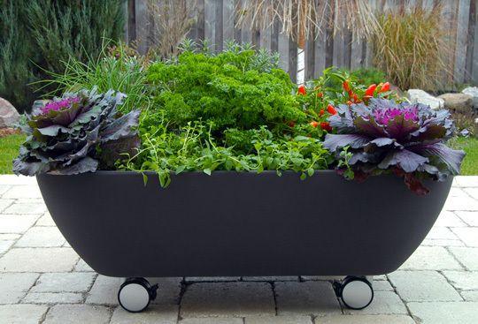 Love this rolling herb/veg garden planter.: Flowers Gardens, Gardens Ideas, Container Gardens, Organizations Gardens, Gardens Design Ideas, Rai Gardens, Gardens Planters, Small Gardens,  Flowerpot