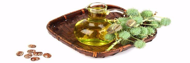 Castor olie, wie kent het niet? https://yoo.rs/sylbibj/blog/de-voordelen-van-castor-olie-1489018927.html?Ysid=24174