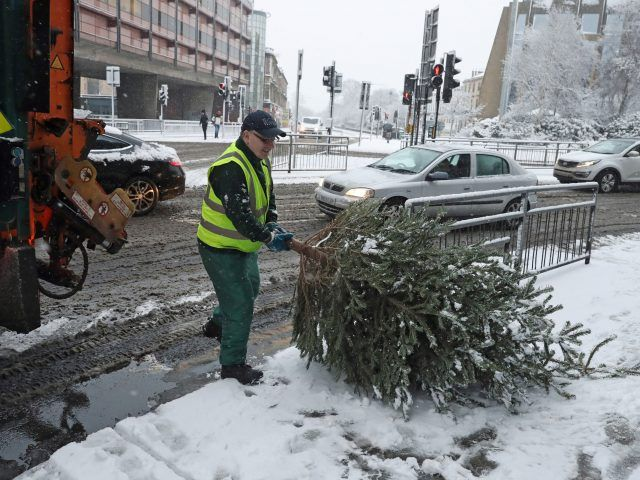 (Andrew Milligan/PA) Snowfall Hits UK As 'Severe Weather' Rolls Across Country: A Christmas tree is collected in the snow in Glasgow