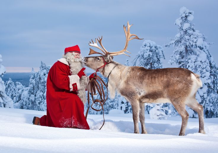 Does Santa have a favourite reindeer?- Finland I would love to have this picture. :)