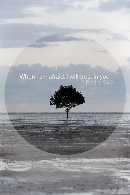 When I am afraid, I will trust in you. Psalm 56:3