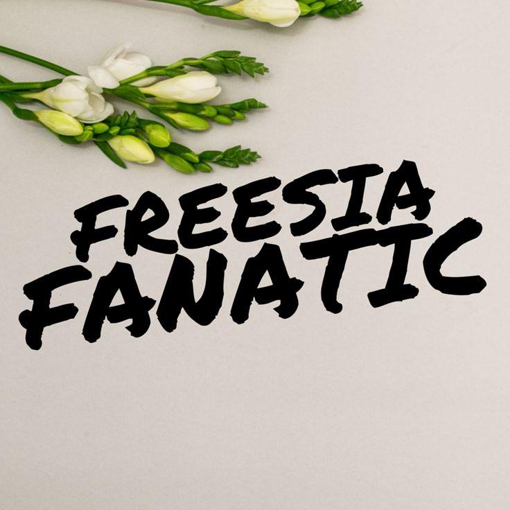 Keep it classic baby. Freesias look amazing en masse, or peeking out between classics like ruffly David Austen or peony roses.