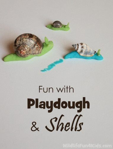 using natural materials with playdough