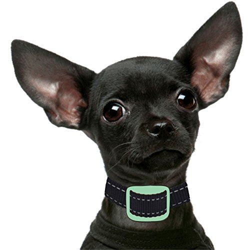 Our K9 Anti Bark Collar, Sound and Vibration Pain Free, 4 to 11-Inches, Mint, Small Dogs. PAIN FREE DESIGN - Uses Sound First then Vibration to provide safe training cues, this Collar Comes Fully Assembled. ALLOWS NORMAL DOG BEHAVIOUR - All Our K9 Anti-Bark Collars allow your dog to bark but NOT excessively, the first 2 Barks a Sound warning is issued, the 3rd Bark Correction is issued. ALL Our K9 No Bark Collars come with Comprehensive Users E-Manuals + Instructional and Training Videos…