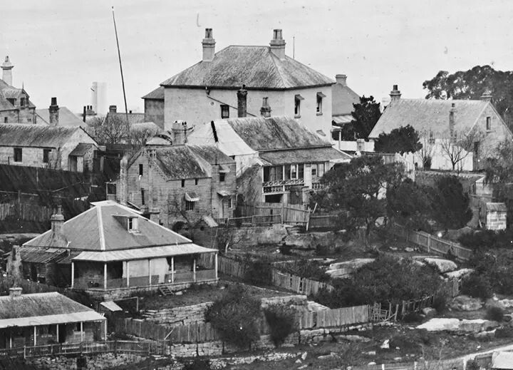 Sydney houses at St Leonards in the 1870s.Photo from State Library of NSW.A♥W