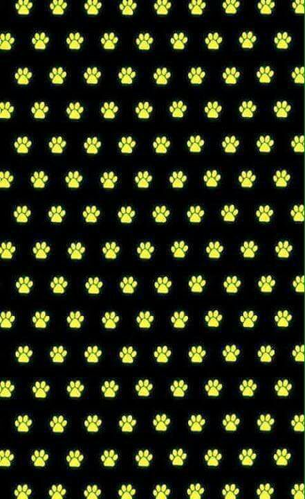 Fotos Miraculous Ladybug - 29 #wattpad #de-todo