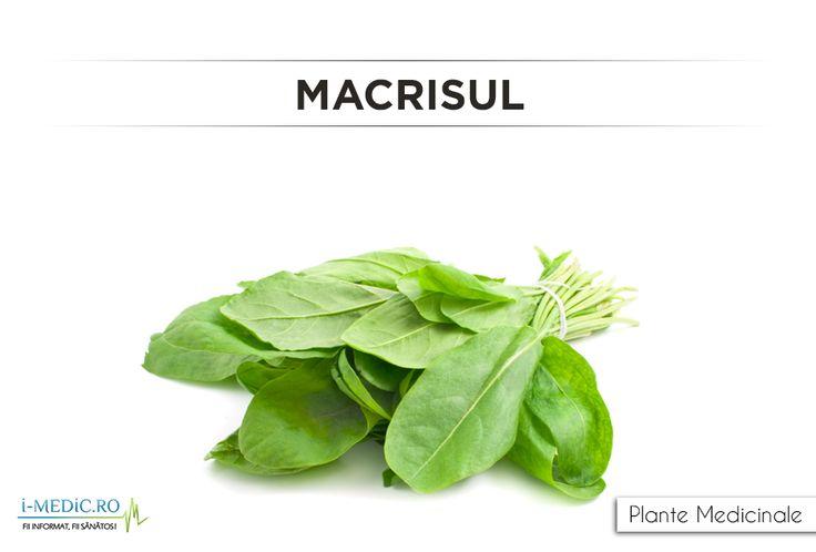 Macrisul este eficient pentru inflamarea pasajelor nazale sau sinuzita, caz in care este necesara administrarea acestei plante in combinatie cu soc, verbena sau ciubotica-cucului. http://www.i-medic.ro/plante/macrisul