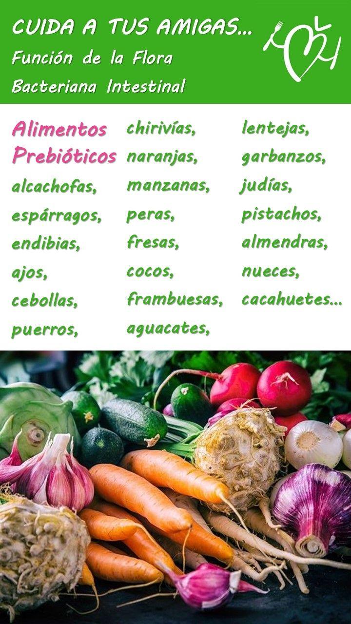Flora Intestinal Alimentos Dañada Bacteriana Alimentos Prebioticos Probioticos Beneficios Fermentados Gases Gastri Nutrición Alimentos Alimentacion