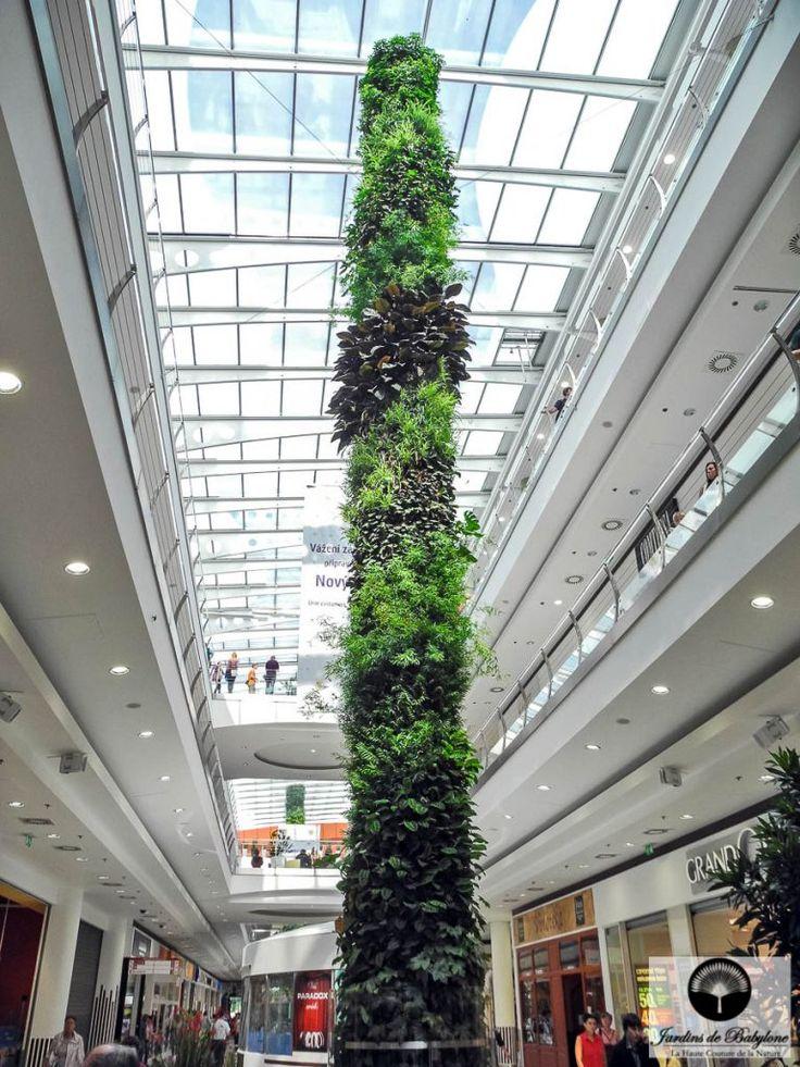 colonnes végétales