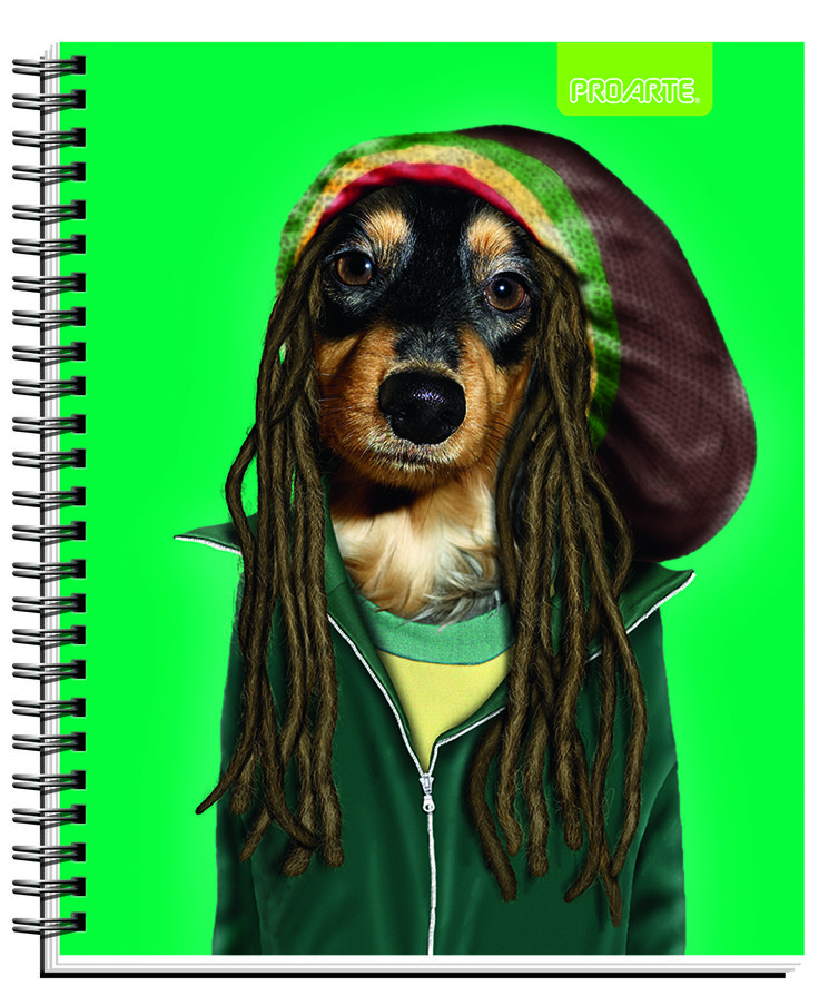 #Pets #Rocks #cuadernos #Notebooks #school #supplies Back to school #PROARTE #PetsRock  Notebooks Proarte license Pets Rock 2014. This line of notebooks is known Artists, singers and actors that happen to become pets. They are very funny. Meet Pets Rocks in all the best bookstores in Chile and Wallmart and Jumbo Supermarkets.