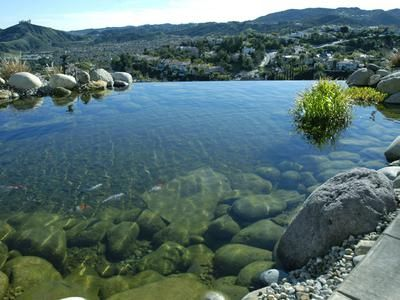 Google Image Result for http://hgtv.sndimg.com/HGTV/2006/06/01/water_feature_infinity_pond_lead.jpg