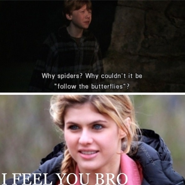Ron and Annabeth. I feel you bro