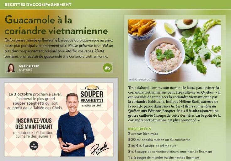 Guacamole à la coriandre vietnamienne - La Presse+