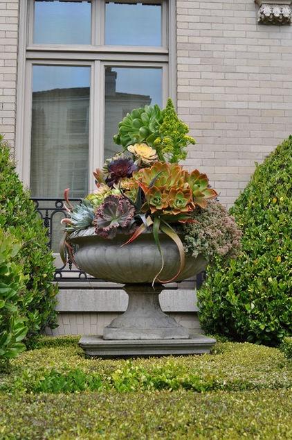 Succulent container -by Janet Paik (Houzz)Container Garden, Succulents Can, Gardens Design Ideas, Flower Pots, Traditional Exterior, Janet Paik, San Francisco, Succulent Planters, Succulents Arrangements