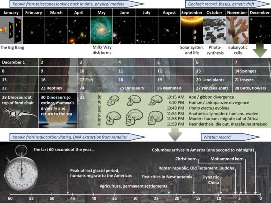 Cosmic Calendar - Wikipedia, the free encyclopedia, cool way to teach the history of the universe
