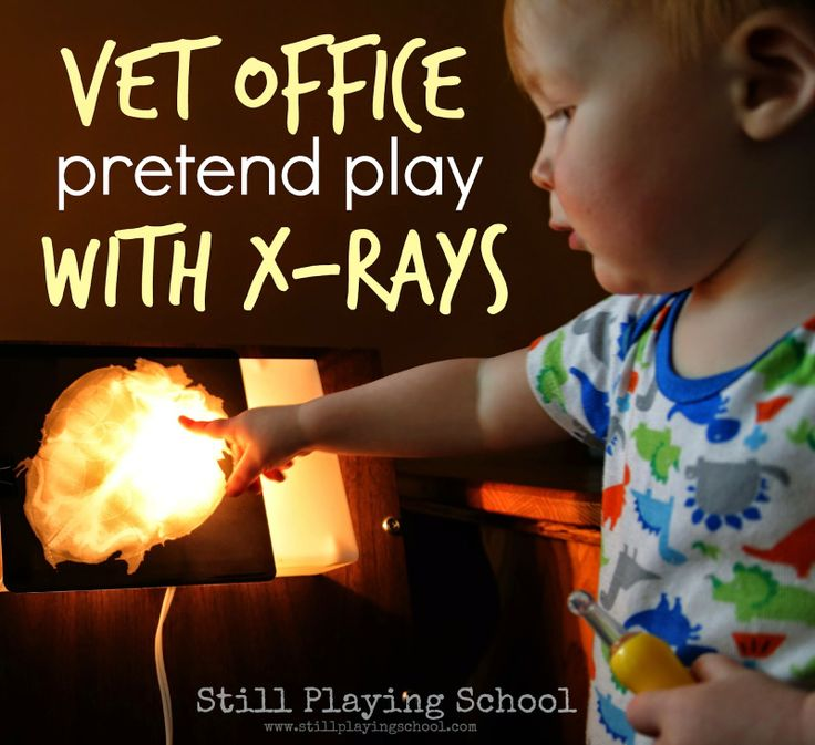 how to become a vet for kids