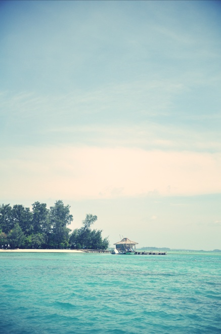 Semak Daun (one of 1000 islands in Pulau Seribu) :')