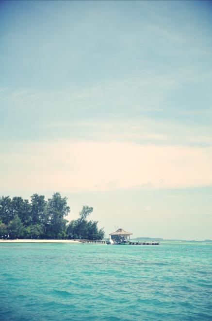 Semak Daun (one of 1000 islands in Pulau Seribu) :')