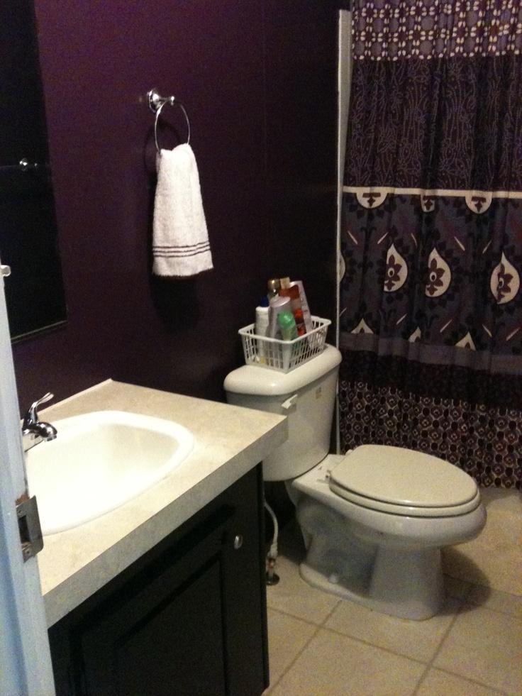 Purple Bathroom Decorating Ideas Pictures: Purple Bathroom - Love The Wall Color